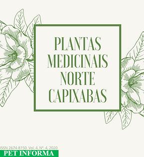 ERVAS MEDICINAIS NORTE CAPIXABAS.png