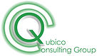 Qubico Consulting: EPM specialists for financial reporting services