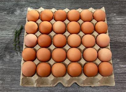 EggsTray.jpg
