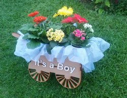 IT IS A BOY 3.jpg
