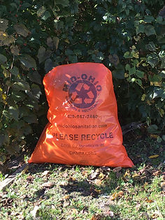 Orange bags with label.jpg