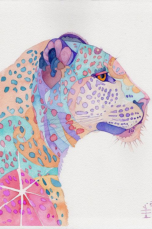 Capella, Avatar de leopardo