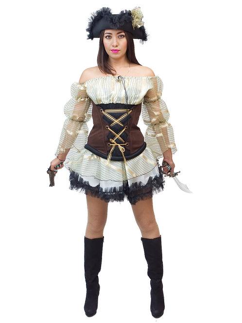 Pirata del castillo