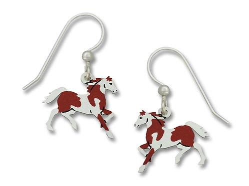 Pinto - Horse