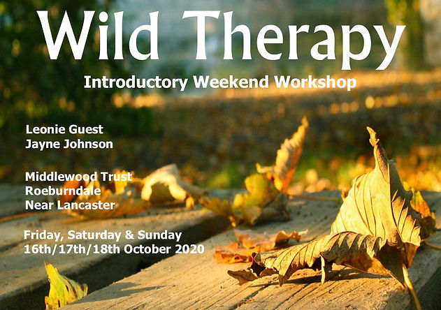 Wild Therapy Intro Middlewood Oct 2020.j