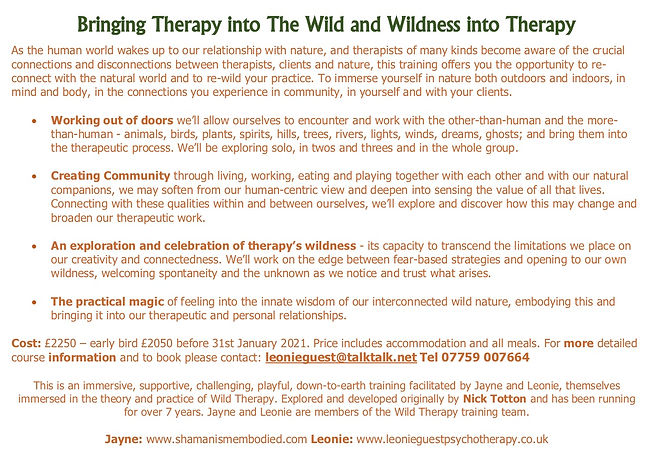 Wild Therapy one year flyer 2021 jpeg.jp
