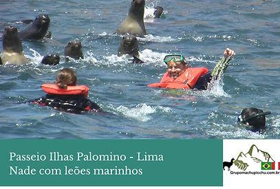 passeio-ilhas-palomino-barco.jpg