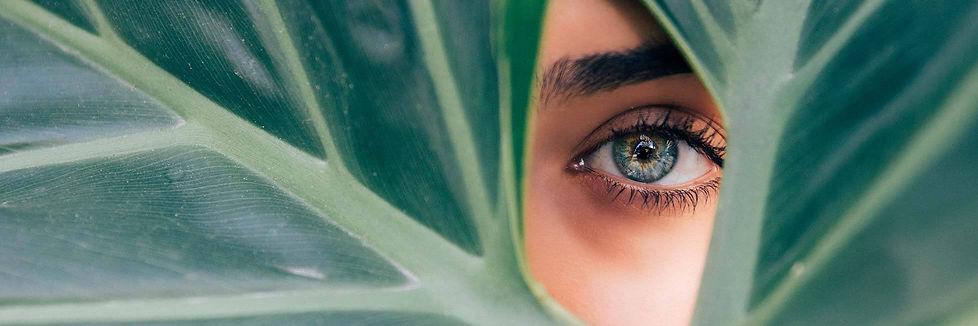 banner_merk_eyeslices-1.jpg