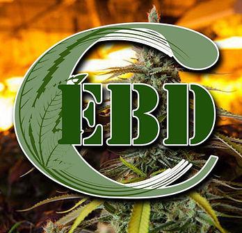 ebd logo.jpg