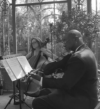 Botanical Gardens string quartet_edited.