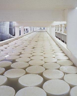 cheese-721145_1280.jpg
