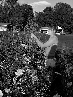 Jenn b+w in garden.jpg