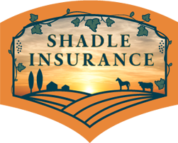 shadle insurance.png