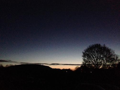 International Dawn Chorus Day (4.30am in the orchard...eek!) 2017