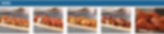 Screen Shot 2020-04-19 at 5.38.43 PM.png