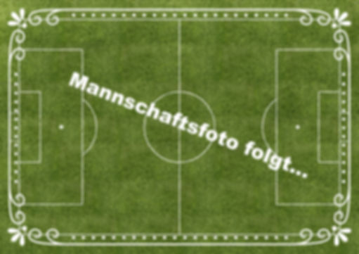 soccer-field-1147736_edited_edited.jpg