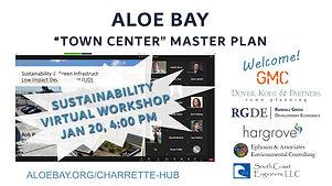 Sustainability Virtual Workshop.jpg