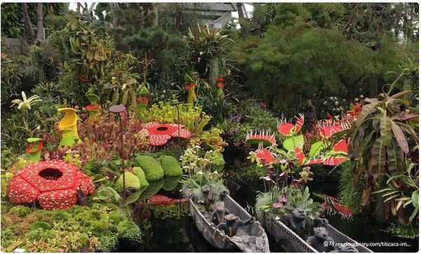 2-4 식물원.jpg