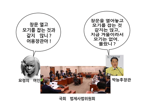 8p-묘령여인-박능후.png