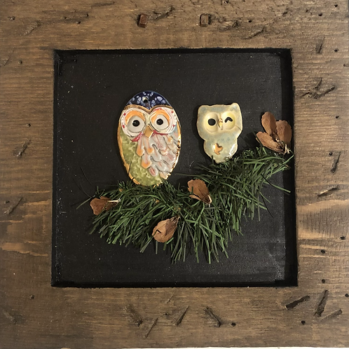 Owls in a Frame