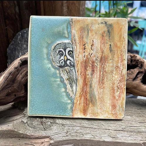 Great Grey Owl Wall Tile