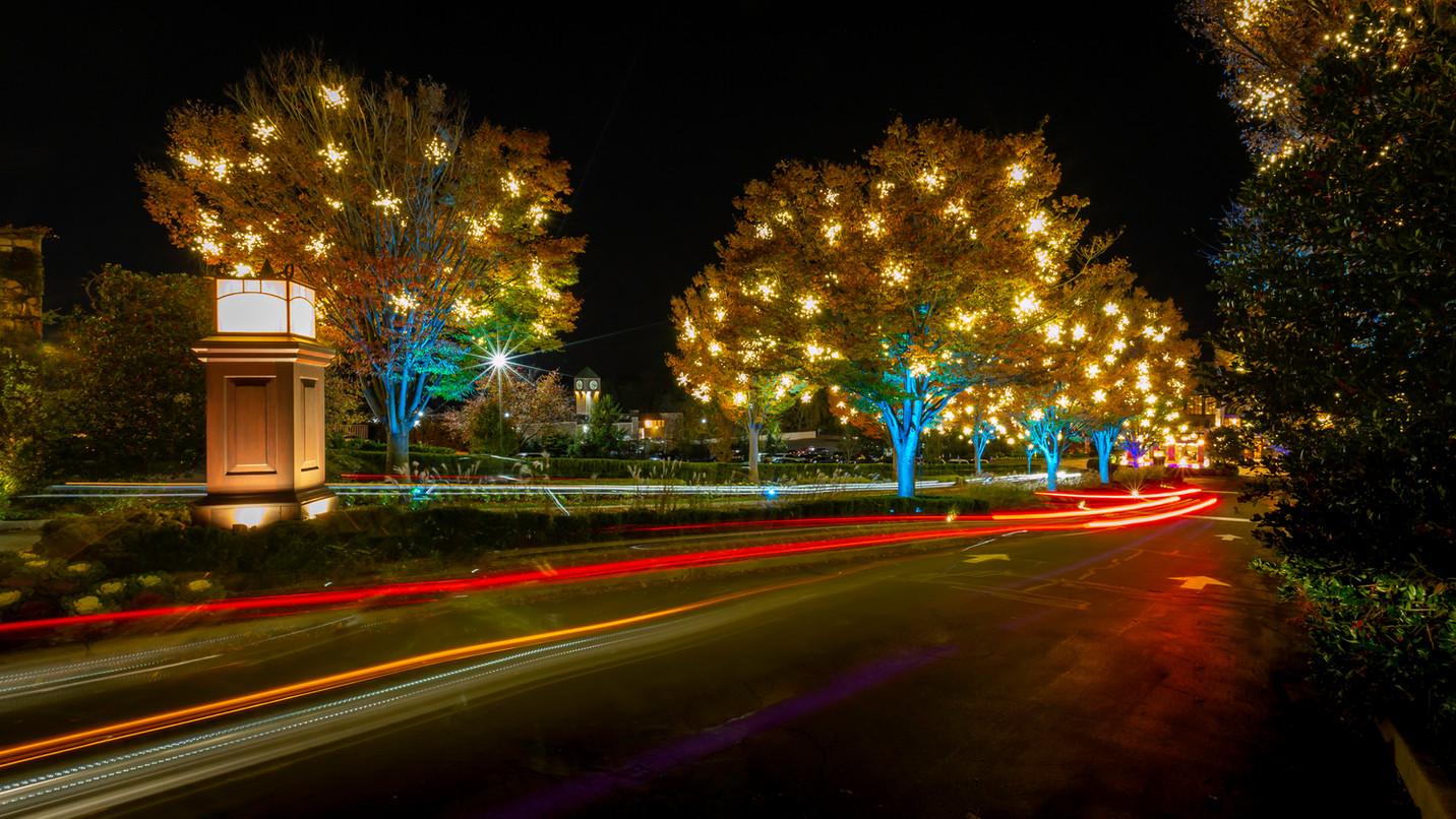 Fall Boulevard