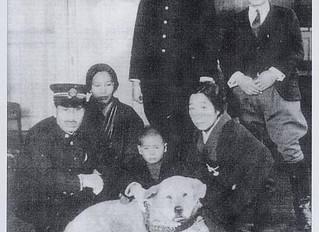 Hachiko, el perro fiel