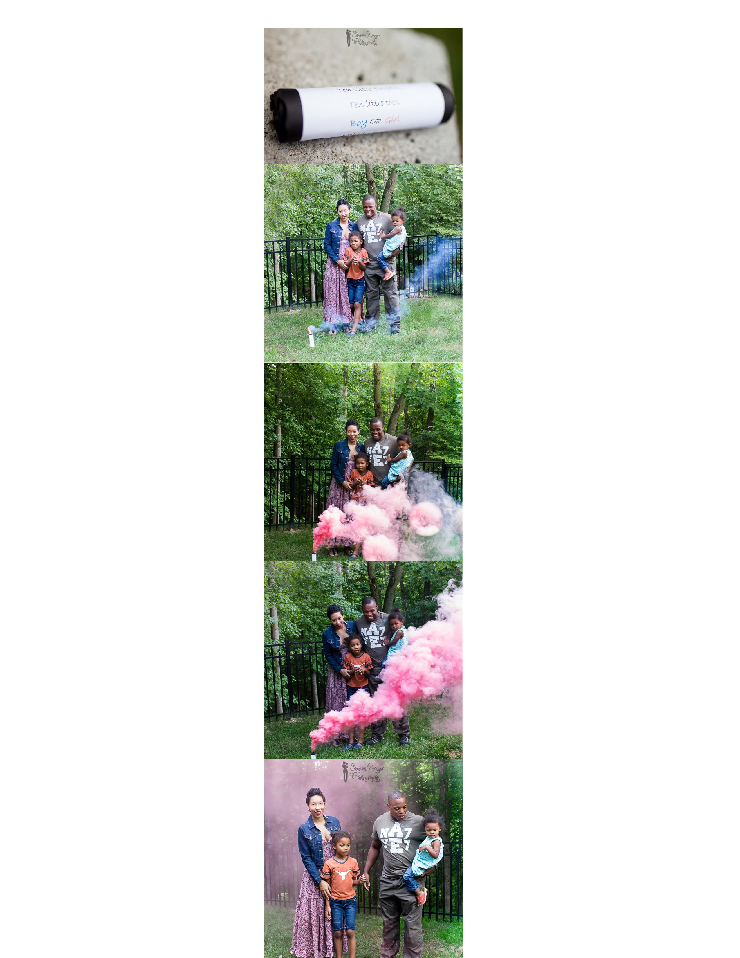 Sandra Gender Reveal Collage