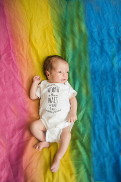 Hudosn Rainbow backdrop 2