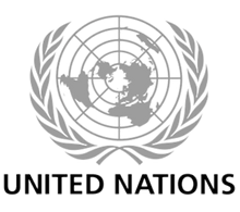 UN_Logo1-600x354_edited_edited.png