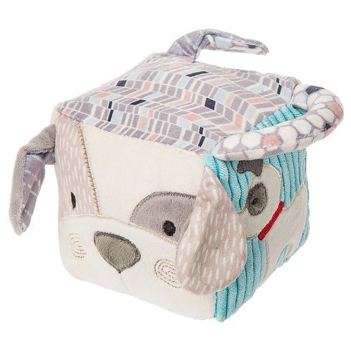 Decco Pup Activity Cube