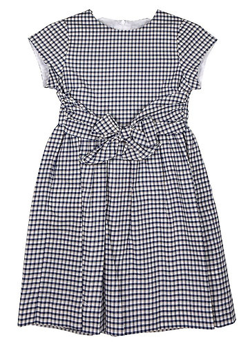 Navy Check Front Tie Dress