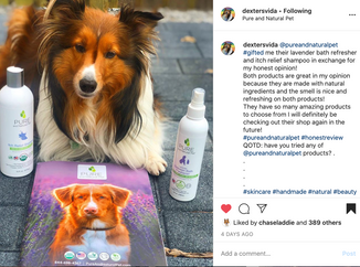 Pure and Natural Pet Influencer Campaign