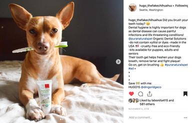 Pura Naturals Pet Influencer Campaign