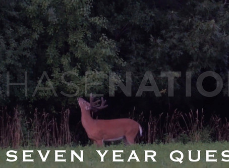 A Seven Year Old Buck, Four Year Quest