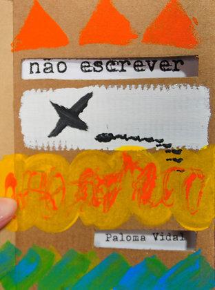 Não Escrever - Paloma Vidal