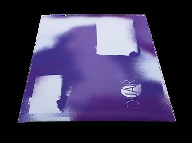 kariérový dijář diář portfolio nástroj self-help selfhelp osobní brand branding životní inventura pracovní změna Petra Drahoňovská Career Designer career dyary diario diaryo