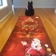 Hoover waiting for Santa