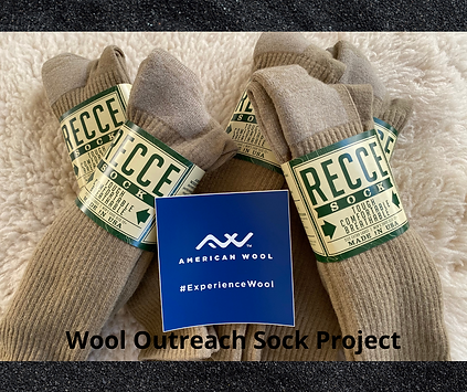 sock project graphic website.png