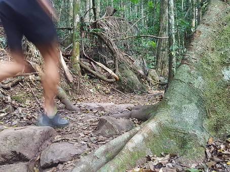 Update: Trail closures in south-east Qld