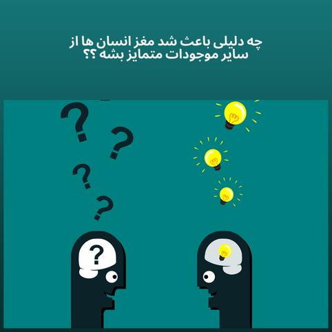 منابع | چه دلیلی باعث شد مغز انسان ها از سایر موجودات متمایز بشه ؟؟