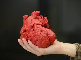 Coração é impresso em 3D em Israel a partir de tecido humano.