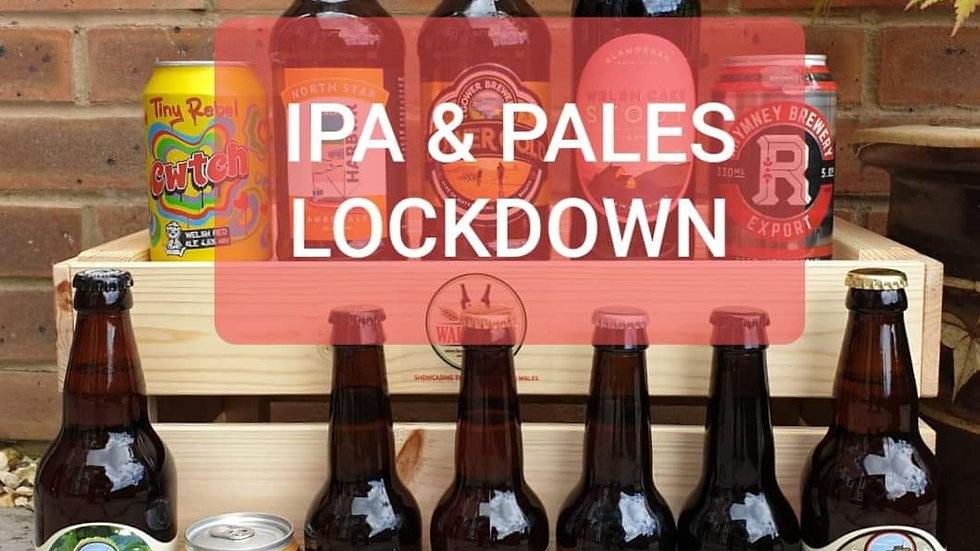 IPA/PALE PANIC BUY BUMPER PACK (12 beers)