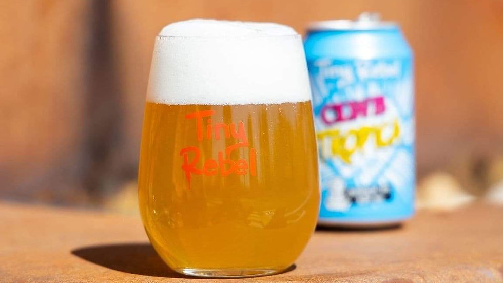 TINY REBEL  - BEER/GIN GLASS