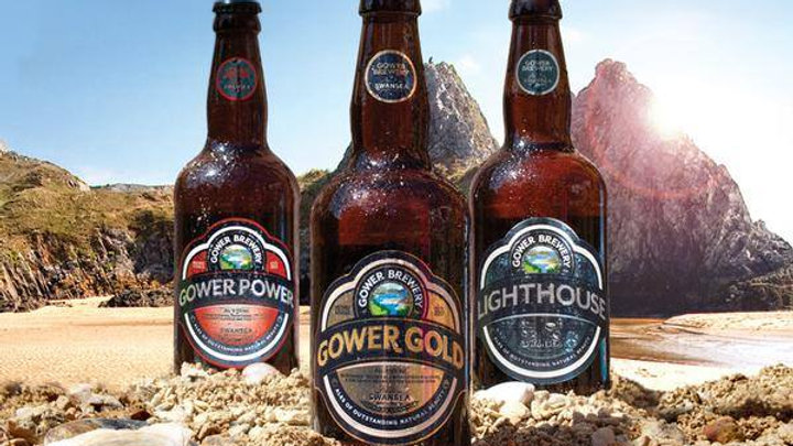 GOWER BREWERY 12 BEER MIXED PACK