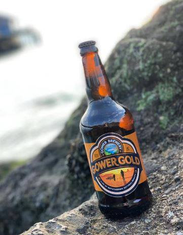 GOWER - GOLD (500ml) 4.5% abv