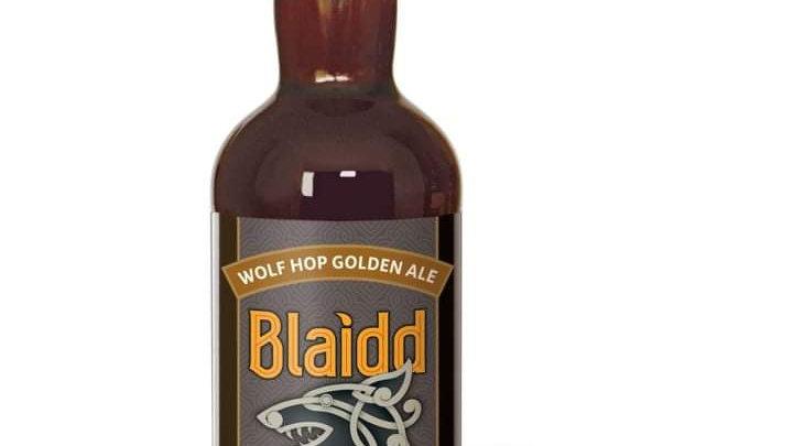 TENBY HARBWR  - BLAIDD GOLDEN ALE (500ml) 5.5% (Gold member £2.63)