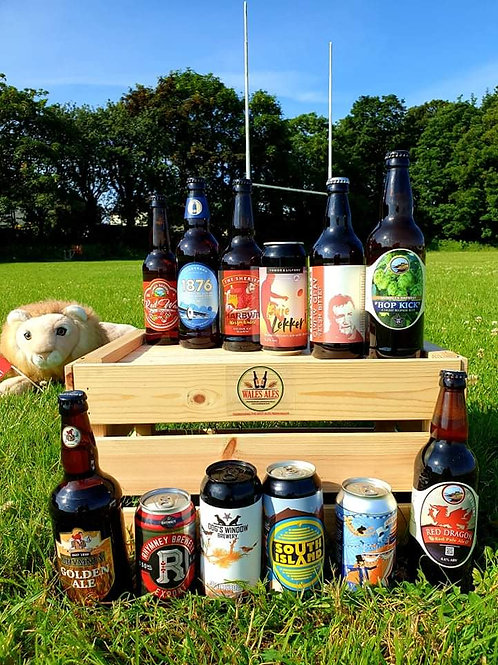 LIONS PACK - RUGBY THEMED 12 BEER SET