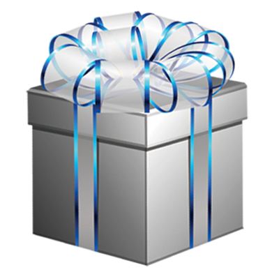 SILVER CHRISTMAS PACKAGE