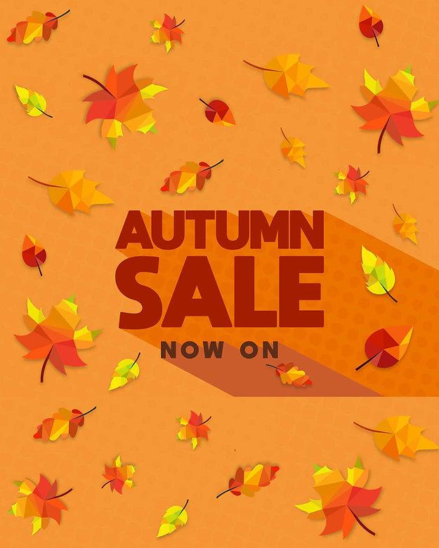new autumn sale - home screen.jpg